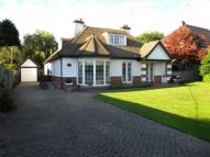 Gillham Wood Road Detached house to rent