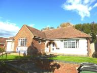 Bungalow to rent in Fern Road...