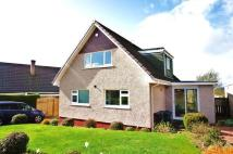4 bed Detached property to rent in Paterson Drive ...
