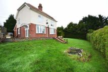 3 bedroom Detached property in OTTERY ST MARY