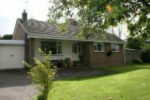 TALATON ROAD Detached Bungalow to rent