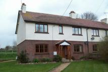 4 bedroom semi detached property to rent in COLATON RALEIGH