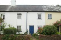 Cottage to rent in *ALFINGTON * OTTERY ST...