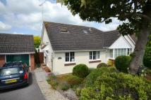 Semi-Detached Bungalow in PAYHEMBURY