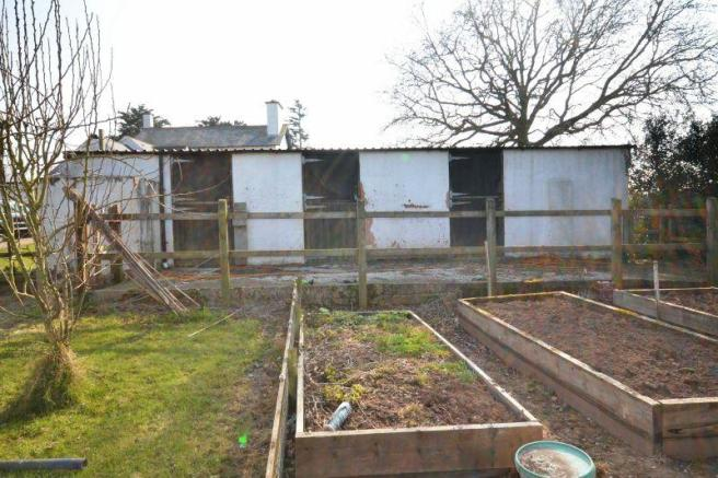 Veg plot and outbuilding
