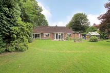 Detached Bungalow in High Road, Chipstead...