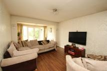 3 bed Detached Bungalow for sale in Crow Lane, Rush Green...