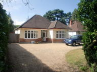 Detached Bungalow to rent in Christchurch