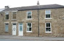 Institute Terrace semi detached house to rent