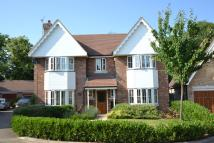 5 bed Detached home for sale in Sacombe Mews...
