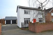 Detached property in Henley Road, Ipswich...