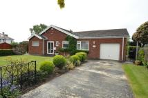Detached Bungalow for sale in Overlea Avenue, Deganwy...