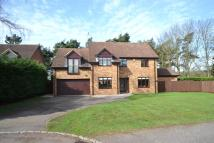 Detached house for sale in Pine Copse Close Duston...