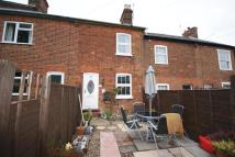 Bedford Street Terraced house for sale