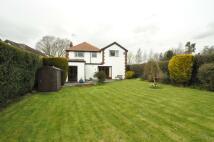 4 bed Detached home for sale in Primrose Lane, Alvanley...