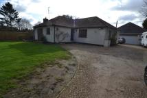 Detached property for sale in Todds Green, Stevenage...