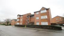 property to rent in Knowles Close