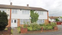 Chitterfield Gate semi detached house to rent