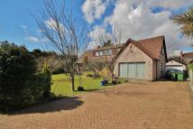 4 bed Detached Bungalow for sale in Rushbrook Close...