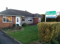 3 bedroom Semi-Detached Bungalow to rent in Berwick Road...