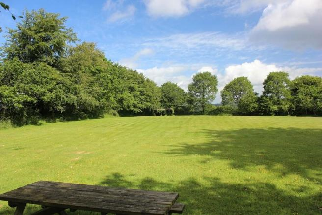 Top lawn or meadow