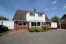 Detached house for sale in Stilton Close, Radbrook...