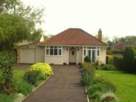 3 bedroom Bungalow to rent in Willow Close, St Georges...
