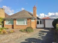 Detached Bungalow for sale in Chatsworth Road...
