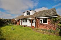 Detached Bungalow for sale in Lancaster Drive...