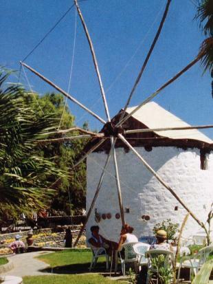Local Windmills