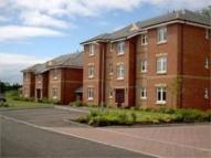 2 bed Apartment in Redburn Gate, Irvine...