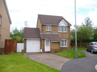 3 bed Detached house in Hollybush Place...