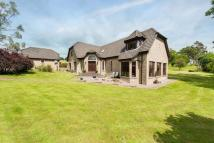 Detached property for sale in Lot 1 Churchmouse...