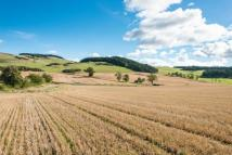 Land in Lot 5 Arable Land for sale