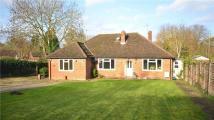 3 bedroom Bungalow for sale in Old Worting Road...