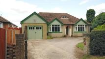 4 bed Bungalow for sale in Pack Lane, Basingstoke...