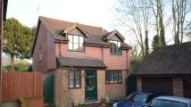 Detached property in Chestnut Bank...