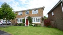 Detached home for sale in Beech Tree Close, Oakley...