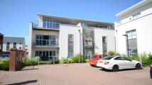 2 bedroom Flat in Idsworth Court...