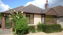 3 bed Bungalow in Pack Lane, Basingstoke...