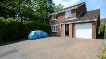 4 bed Detached property for sale in Dorrel Close...