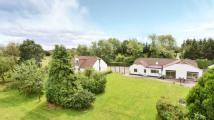 4 bed Bungalow for sale in New Road, Pamber Green...