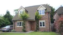 Shepherds Walk Detached house for sale