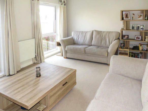 Living Room Shot 3