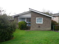Detached Bungalow for sale in St. Edmunds Walk...