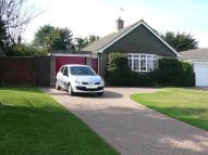 3 bedroom Detached Bungalow for sale in Brocks Copse Road...