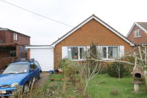 Detached Bungalow for sale in Main Road, Havenstreet...