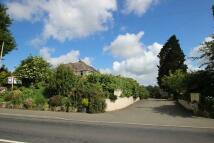 Detached home in Newport Road, Apse Heath