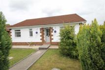 Detached Bungalow for sale in Coed Y Pandy, Caerphilly...