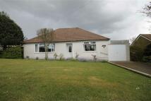 Lon Y Llyn Detached Bungalow for sale